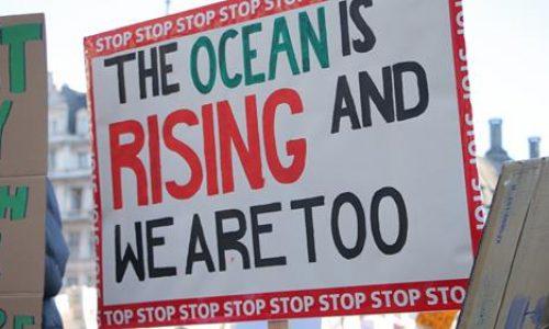 Il capitalismo sta uccidendo il pianeta… Abbiamo bisogno di una rivoluzione!