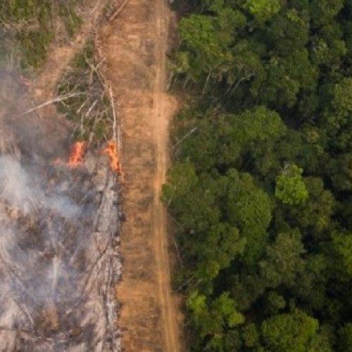 Morte e distruzione nell'Amazzonia di Bolsonaro