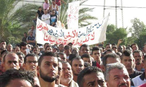 Tunisia – L'oasi di Jemnah in lotta