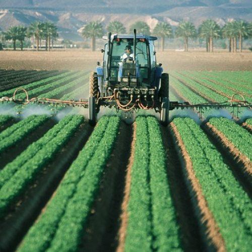 Quale soluzione alla crisi del settore agro-alimentare?