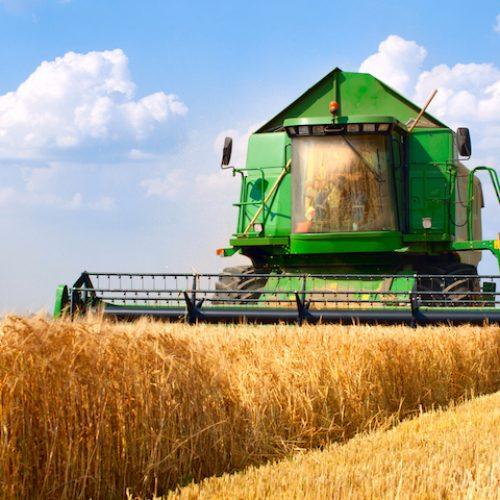 Covid 19, crisi economica e crisi alimentare