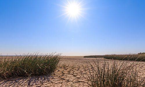Siccità globale: la sete di profitto prosciuga il pianeta